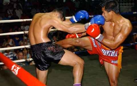 Тайский бокс - современное спортивное единоборство.
